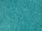TARKETT VENETO xf²™ Bfl (2.5 mm)